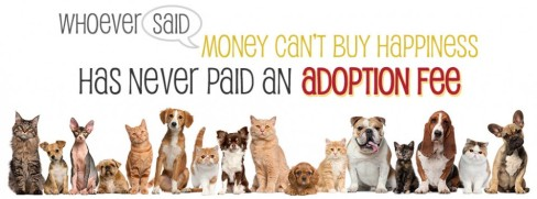 cropped-adoption-fee-banner1.jpg
