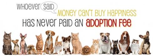 cropped-adoption-fee-banner1.jpg